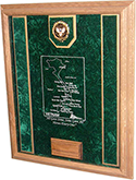 vietnam awards case